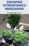 GROWING HYDROPONICS MARIJUANA STARTER'S KIT: Everything You Need To Know And How To Set Up Marijuana Hydroponics Growing System (English Edition)