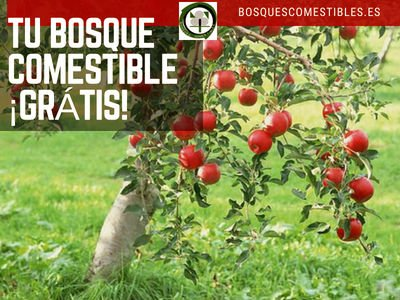 Tu Bosque Comestible Grátis | RED IBÉRICA DE BOSQUES
