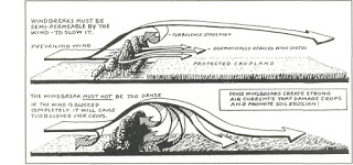cortavientos y el efecto venturi