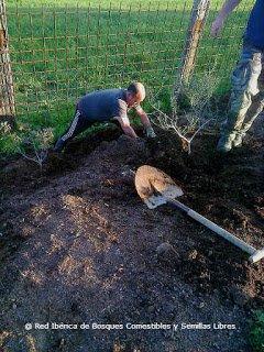 Pepe el Vecino en acción plantando un bosque isla