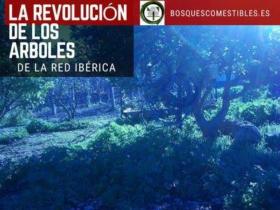 Revolución de los Arboles