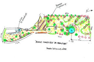 Diseño del Bosque Comestible de Monóvar por la Red Ibérica