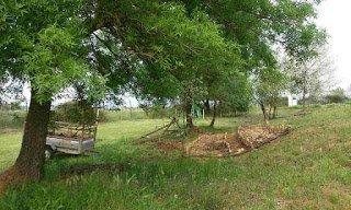 Bosque Comestible de Tabla Honda compostera