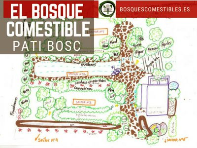 Bosque Comestible Patic Bosc