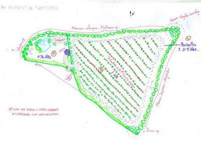 Diseño del bosque comestible de Calabazas