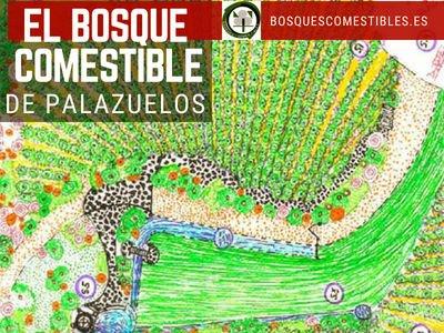 Bosque Comestible de Palazuelos | Bosques Comestibles en Guadalajara