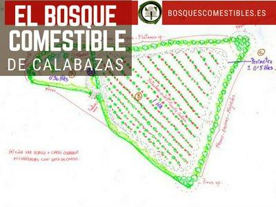 Bosque Comestible de Calabazas