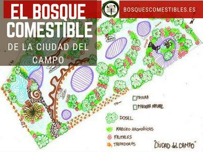 Bosque Comestible, Ciudad del Campo