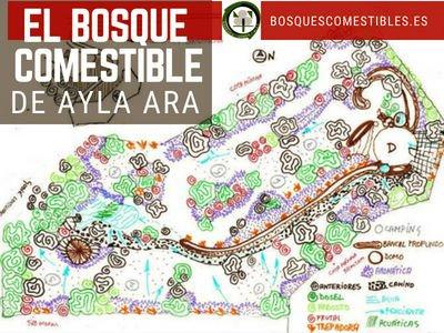 Bosque Comestible Ayla Ara, Avila