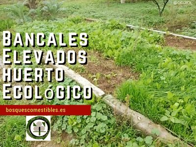 Bancales Profundos en Huertos Ecológicos