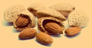 Almendro - Arboles frutales para un bosque de alimentos