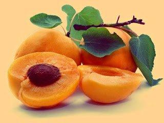 Albaricoque - Arboles frutales para un bosque de alimentos