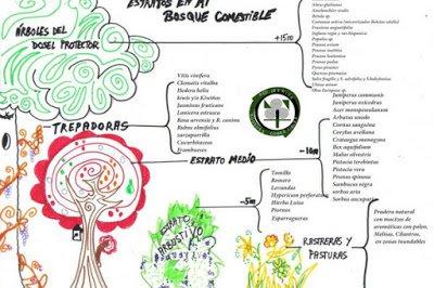 lista de especies en el bosque Comestible de Pita