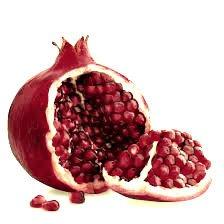 Granados - Arboles frutales para un bosque de alimentos