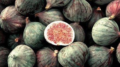 Higueras - Arboles frutales para un bosque de alimentos