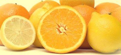 Naranjos - Arboles frutales para un bosque de alimentos