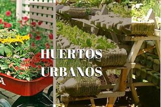 HUERTOS URBANOS EN CASA