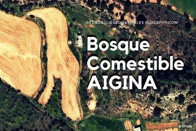 Bosque de Alimentos de Aigina