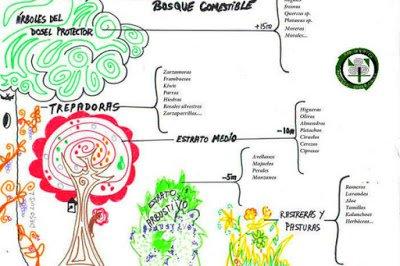 Selección de Especies para el Bosque Comestible de Villalba de la Sierra