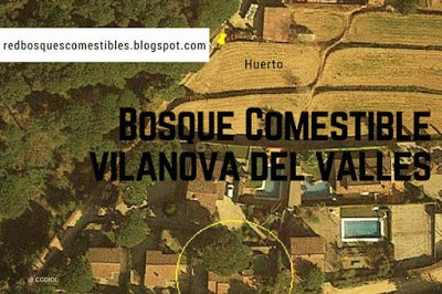 Bosque de Alimentos Vilanova del Valles