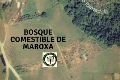 Bosque Comestible de Maroxa
