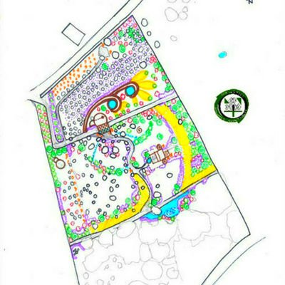 Diseño Básico Bosque Comestible Vida Prospera Avila