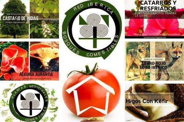 Para los Bosques de Alimentos