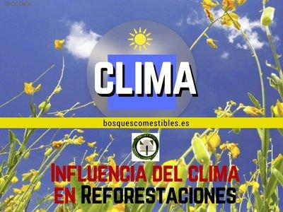 Influencia del Clima en Reforestación
