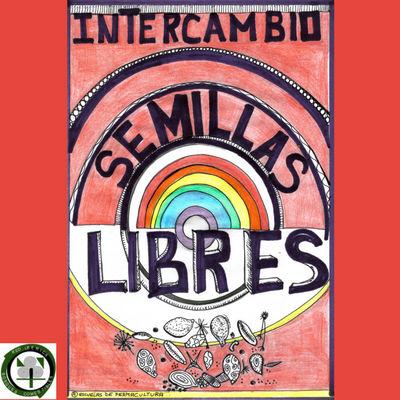 Intercambiar semillas con la Red Ibérica de Bosques Comestibles y Semillas Libres
