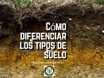 Tipos de suelos, Cómo Diferenciarlos