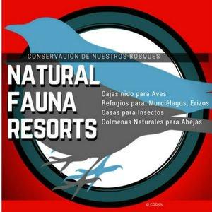Fauna Resort Proyectos de la Red de Bosques