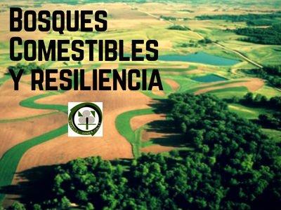 Bosques Comestible y Resiliencia