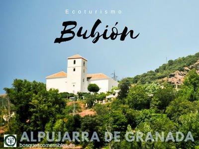 Bubión | Alpujarra de Granada