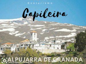 Capileira, Pueblo de La Alpujarra