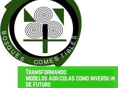 Modelos Agrícolas en los Bosques Comestibles
