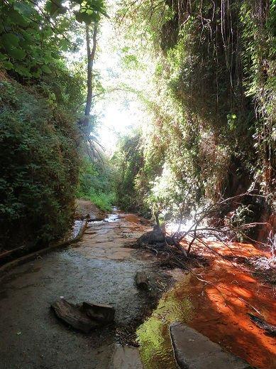 Portugos, Naturaleza
