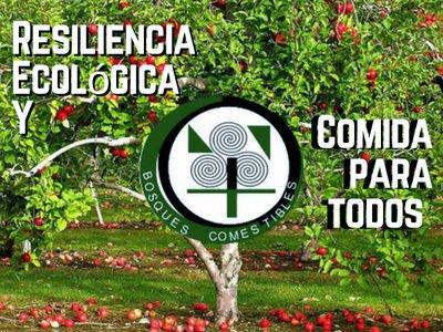Resiliencia Ecológica y Bosques Comestibles | Comida para todos