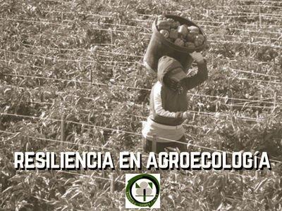 Resiliencia Agroecología