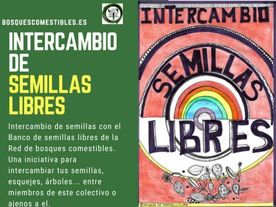 Intercambio de Semillas Libres