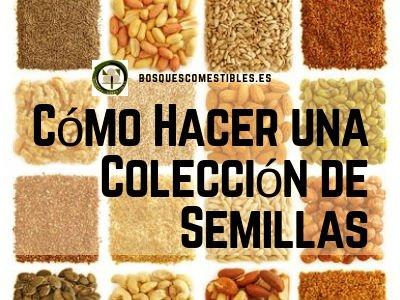 Colección de Semillas