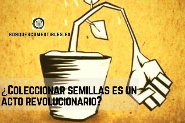 Semillas y Revolución.