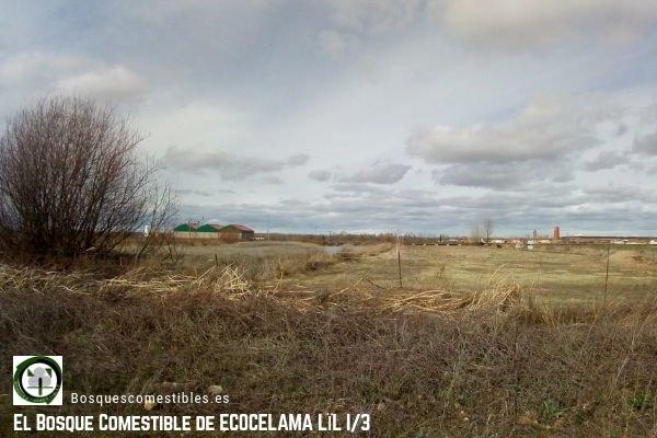 Biodiversidad. Villacelama