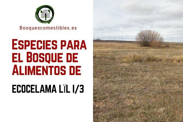 Especies en el Bosque de Alimentos de Villacelama