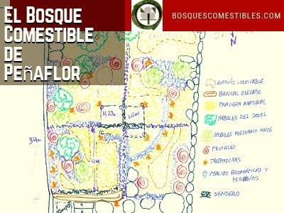 Bosque Comestible Peñaflor Zaragoza
