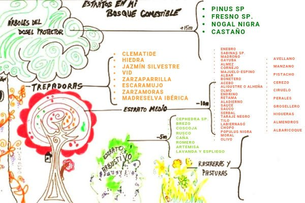 Especies Bosque Comestible Penaflor