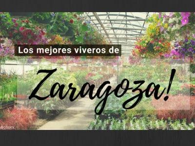 Viveros en Zaragoza