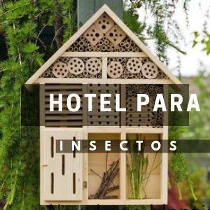 Dona un Hotel para Insectos