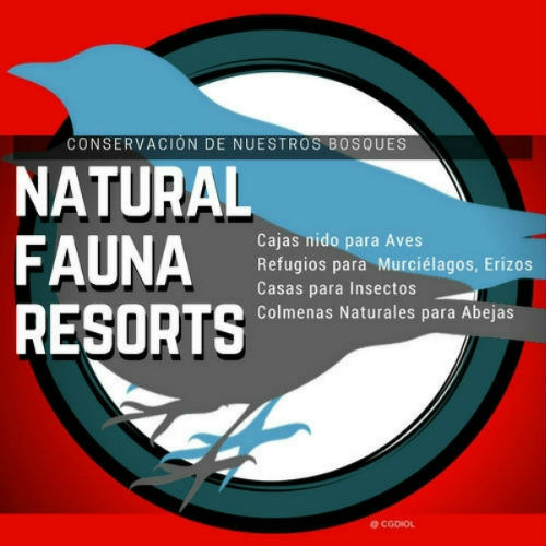 Natural Fauna Resort, Proyecto de Red de Bosques