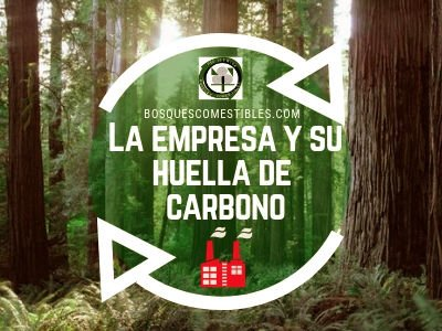 Huella de Carbono Empresas