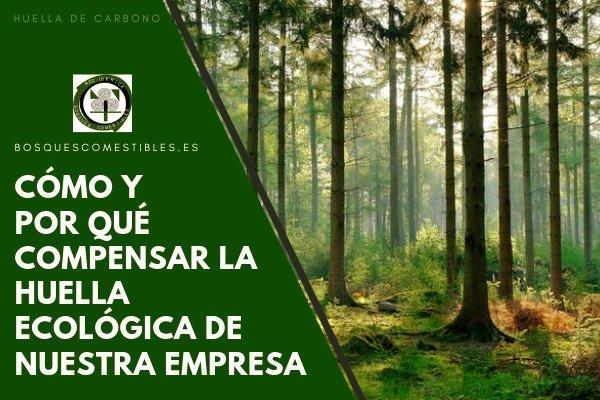 Huella Ecológica en las Empresas